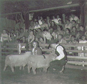 Man and woman showing two sheep to crowd